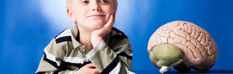 Формирование пространственного мышления у дошкольников