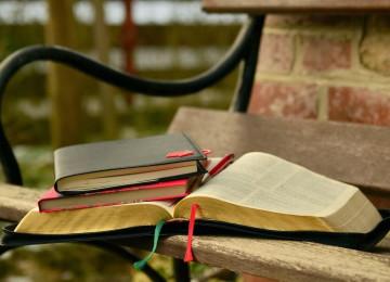 Пословицы и поговорки о воспитании