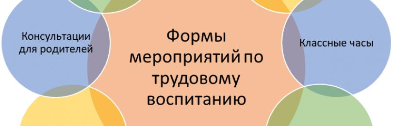 Темы мероприятий по трудовому воспитанию в школе и детских садах