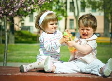 Почему ребенок отнимает игрушки у других детей