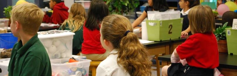 Правила поведения на уроках в школе
