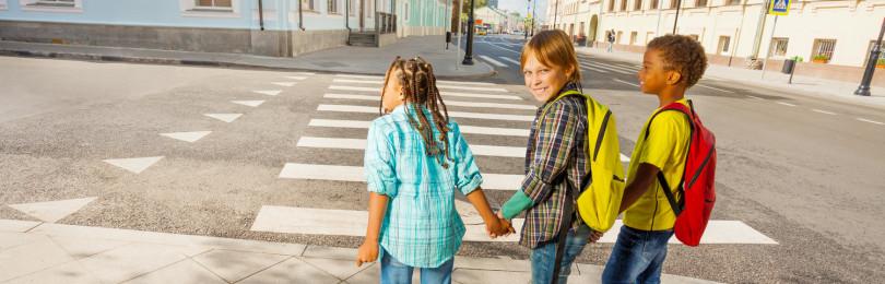 Детские проекты по ПДД в детских садах в соответствии с ФГОС