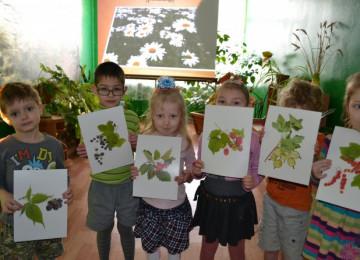 Занятия на тему экология во 2-х младших группах ДОУ по ФГОС
