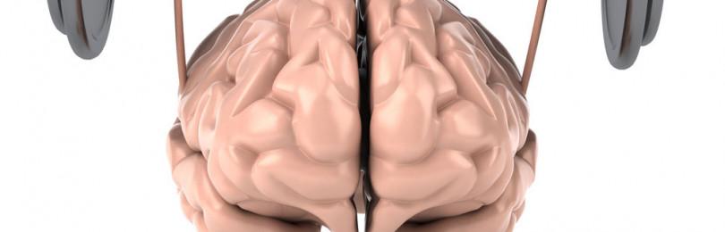 Развитие умственных способностей и интеллекта
