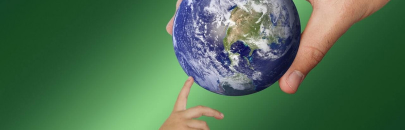 Занятия по экологическому воспитанию для дошкольников