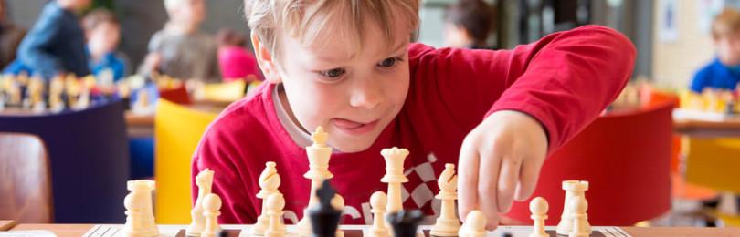 Методика обучения шахматам детей дошкольного возраста