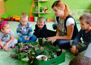 Проведение дидактических игр на тему экологии в средних группах