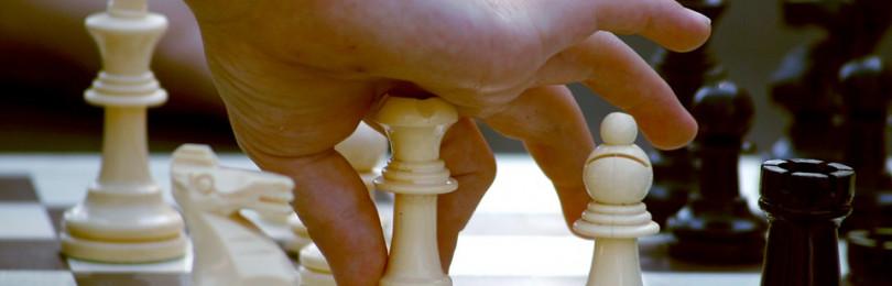 Программа и обучение в шахматном кружке для малышей