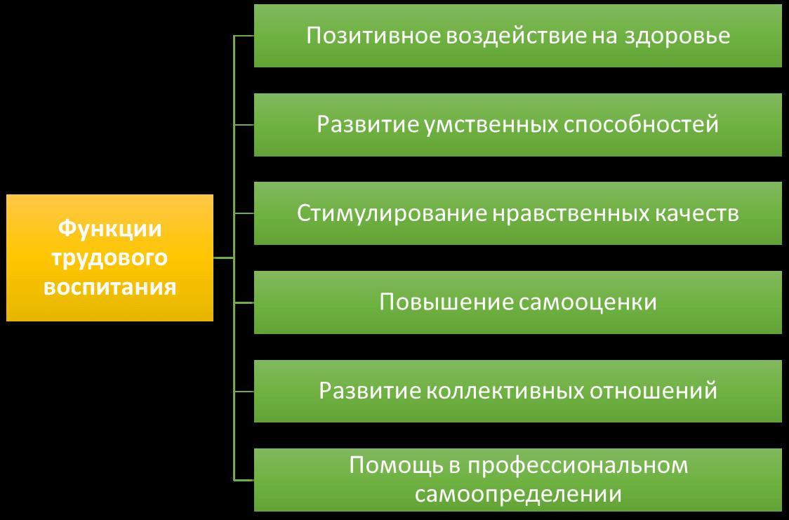 Схема: Функции трудового воспитания