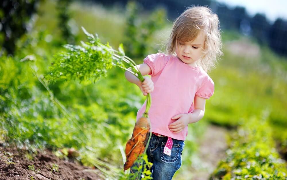 Девочка с морковкой на огороде