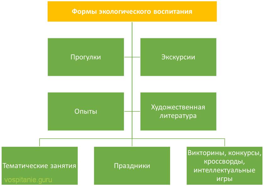 Схема: Формы экологического воспитания в ДОУ