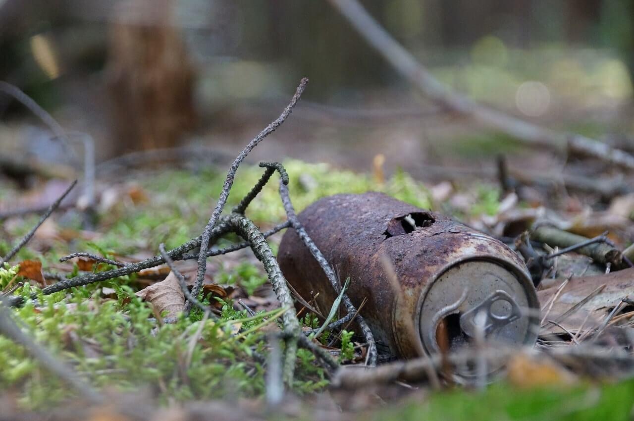 Ржавая банка в лесу. Загрязнение окружающей среды