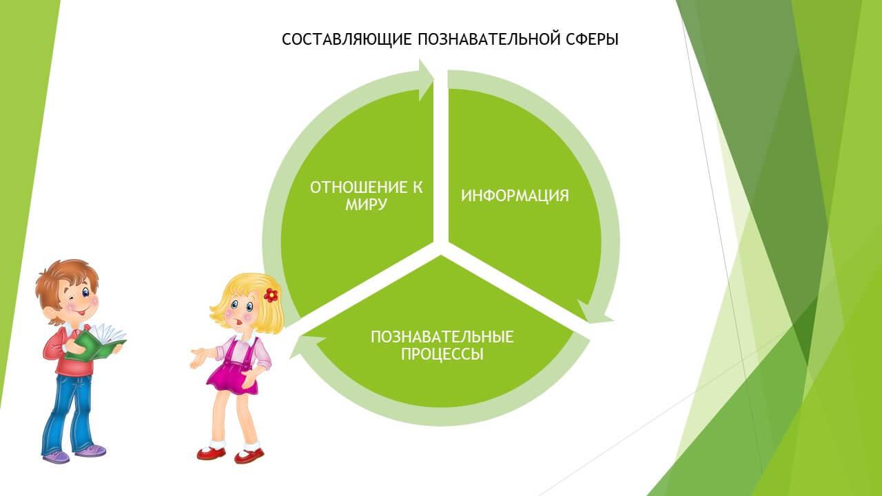Составляющие познавательной сферы