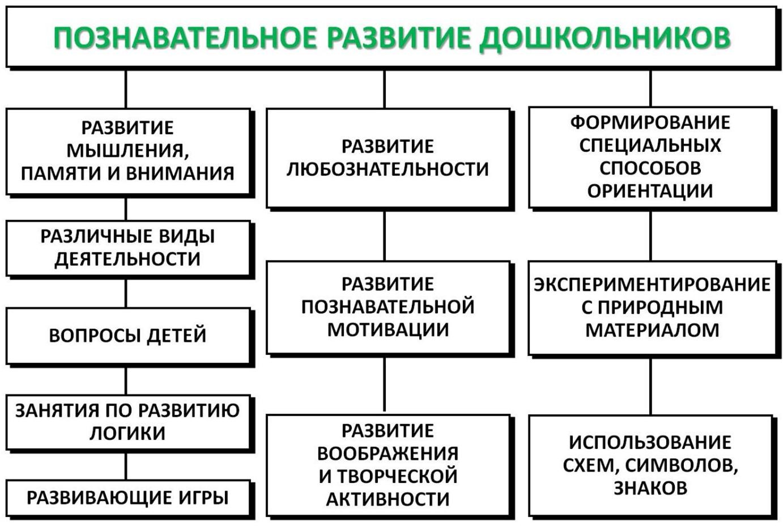 Составляющие познавательного развития