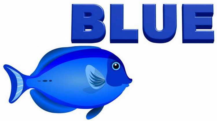 Blue - синий цвет на английском языке и синяя рыбка