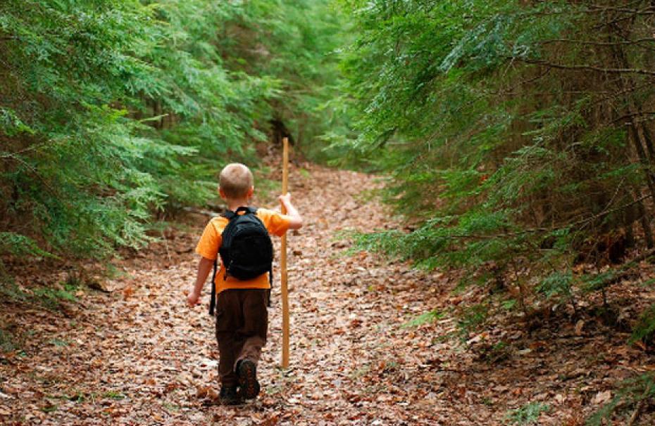Ребенок с рюкзаком идет в лесу