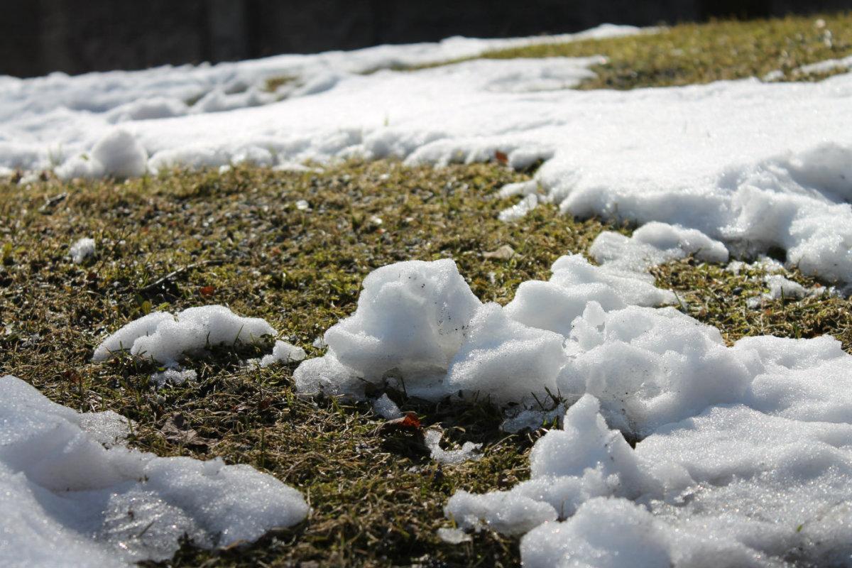 Весна фото тает снег