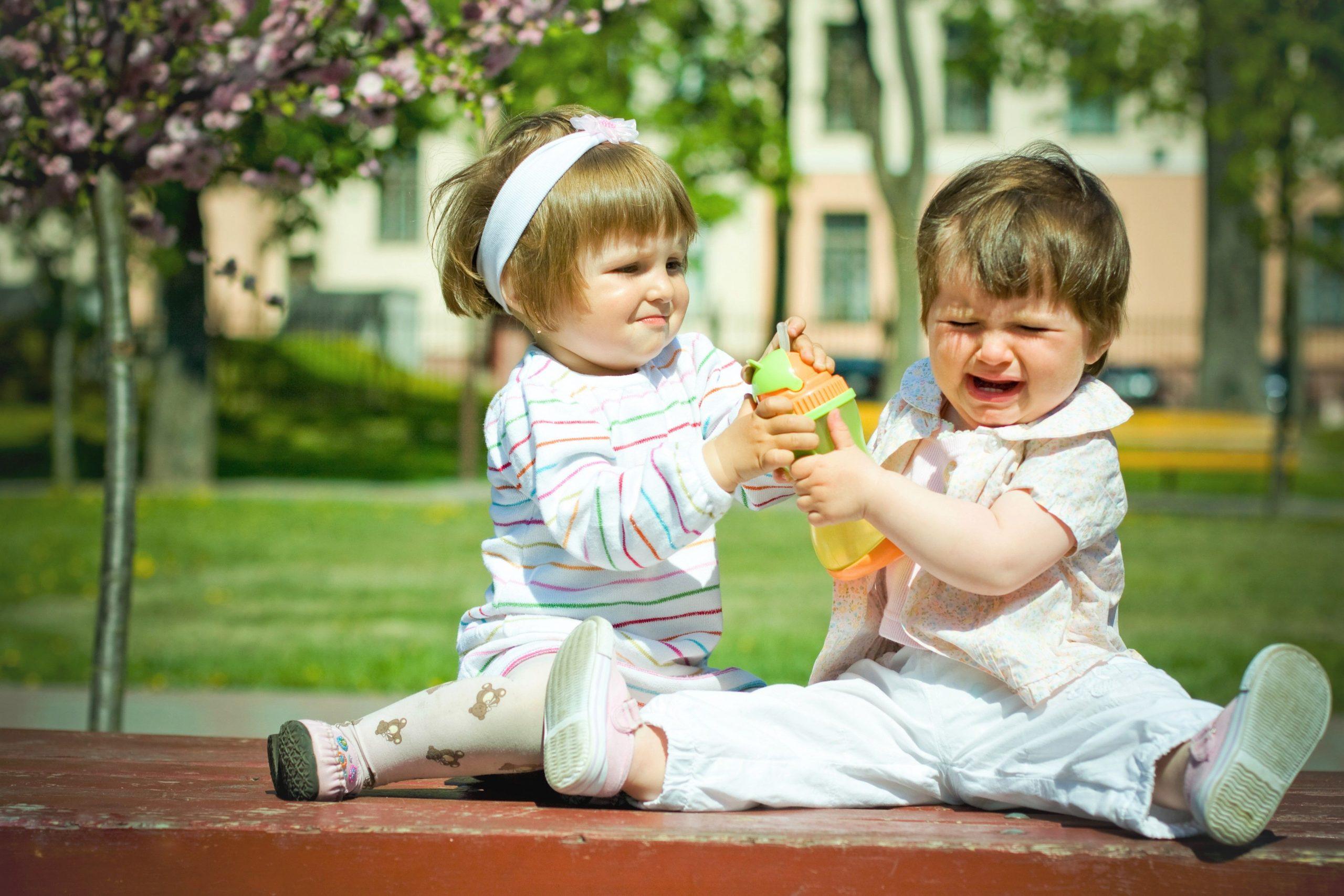 Девочка отнимает игрушку у мальчика